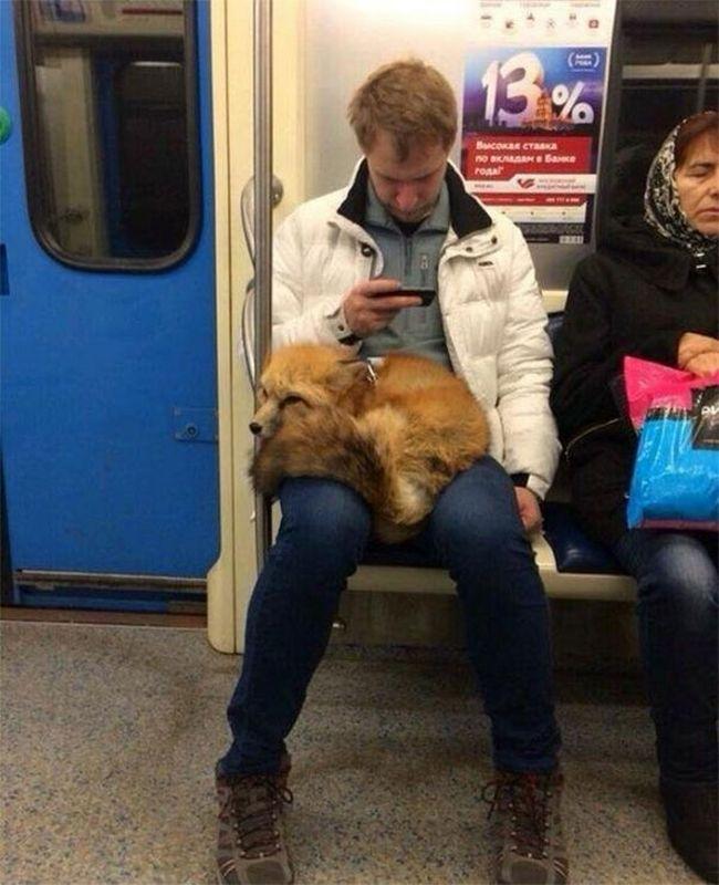 20 Momentos que provaram que o metrô é o lugar mais estranho do mundo